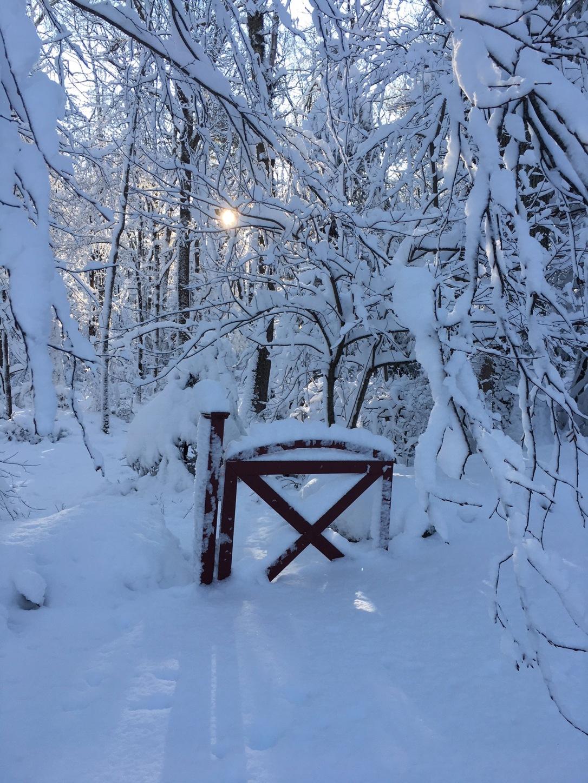 snowgate
